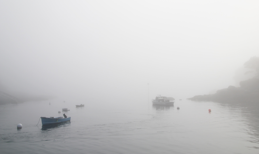 new-harbor-fog